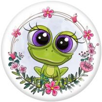 20MM  Unicorn  Owl  frog  Cat   Patriots  Print   glass  snaps buttons