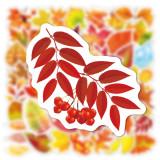 50 feuilles d'automne feuille d'érable automne Graffiti autocollants ordinateur portable tasse d'eau étanche bagages autocollants