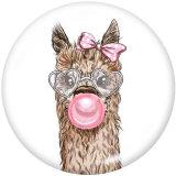 20MM  Cartoon Owl   Alpaca  sheep  Print  glass  snaps buttons