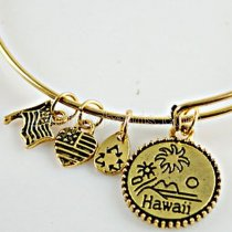 Antique gold plated Expandable Wire Bangle with metal charm-hawaii
