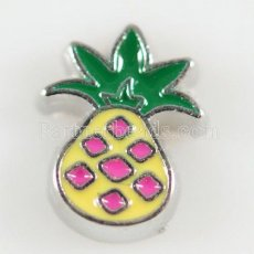 Schwimmende Medaillon Charms