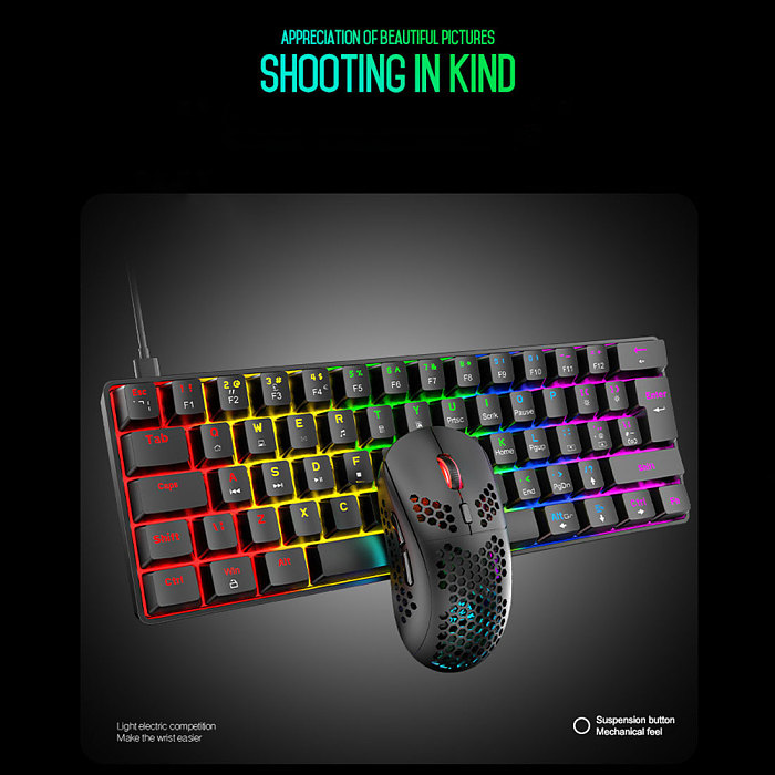 Wired Gaming Mechanical Keyboard 60% with Mouse Combo RGB Chroma for iPad Laptop (Red Switch)