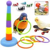 Bird Training Toys