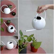 Stainless Steel Watering Can with Long Spout, Water Sprinkler with Lid, Indoor Watering Can for House Bonsai Plants Garden Flower