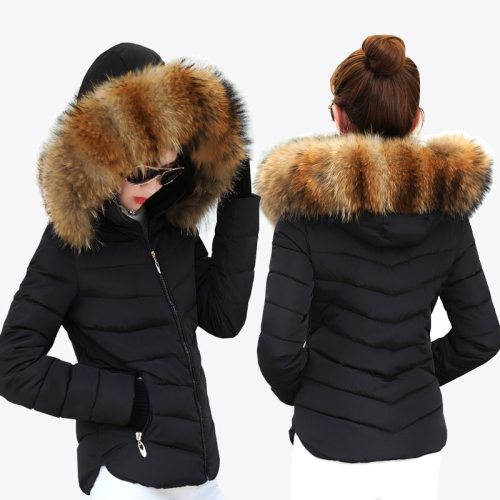 Female Warm Winter Jacket 2019 Fashion Women Hooded Fur collar Down Cotton Coat Solid color Slim Large size Female Coat