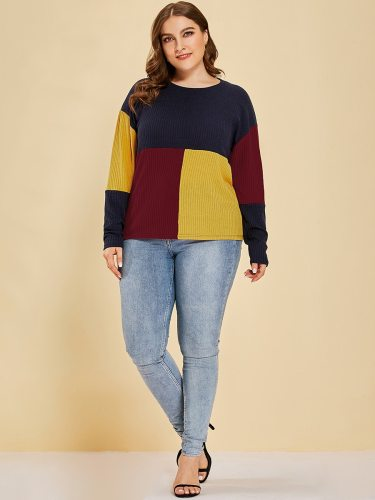 Women's Plus Size Pullover Color Block Casual Crew Neck Basics Patchwork Long Sleeve