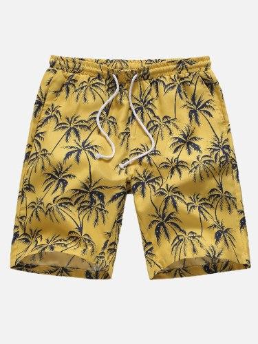 Men's Beach Casual Vacation Drawstring Mid Waist Elastic Waist Shorts Colorblock Breathable