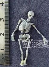 Skeleton Dead Body Scene Component Warhammer Universal