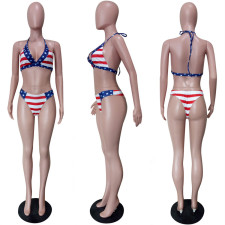 Sexy Striped 2pcs Swimsuits Bikini Sets LSL-6266