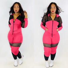 Casual Mesh Patchwork Hooded Tracksuit 2 Piece Set TR-963