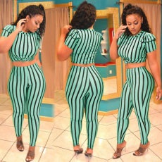 Plus Size Stripe Short Sleeve 2 Piece Outfit PIN-8272