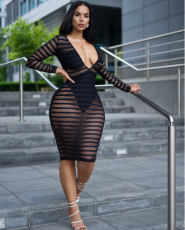 Mesh Perspective V Neck Long Sleeve Club Dress YN-955