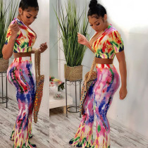 Printed Zipper Crop Tops And Pants Two Piece Suit YH-5055