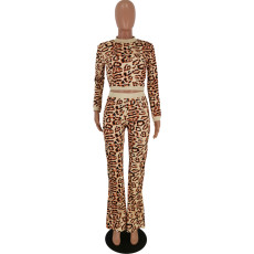 Leopard Print Long Sleeve Two Piece Pant Suits YH-5113