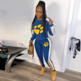 Casual Patchwork Tracksuit Two Piece Sets CH-8086