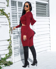 Solid Hooded Crop Top And Pants Bodycon 2 Piece Sets LQ-5806