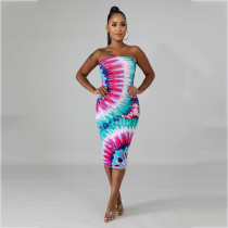 Sexy Printed Off Shoulder Bodycon Midi Tube Dress AWN-5037