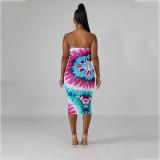 Sexy Printed Off Shoulder Bodycon Midi Tube Dress AWN-5037