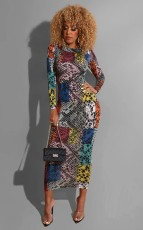 Colorful Print Full Sleeve Long Maxi Dress YNT-7091