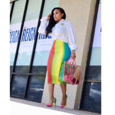 Rainbow Print High Waist Bodycon Midi Skirt YNT-7037