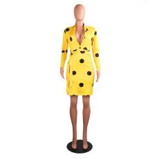 Wave Point Print Bodycon Dress AIL-026