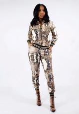 Snake Print Two Piece Pant Suit HMS-5180