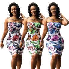 Floral Print Bodycon Tube Dress NY-8342