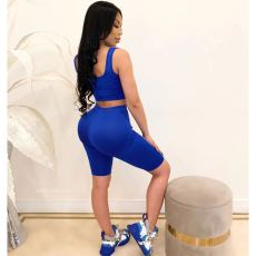 Casual Tank Tops And Shorts Fitness 2 Piece Sets WY-6641