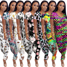 Casual Printed V Neck T Shirt Long Pants 2 Piece Sets WY-6660