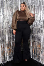 Plus Size Turtleneck Long Sleeve Crop Tops HM-6340