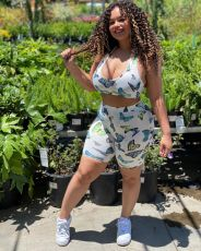 Sexy Butterfly Printed Crop Top and Shorts Two Piece Set DMF-8132
