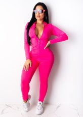Solid Hooded Long Sleeve Zipper Two Piece Sets OFN-6375