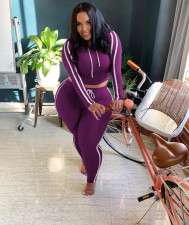 Plus Size Casual Hooded Long Sleeve Two Piece Pants Set YD-8301