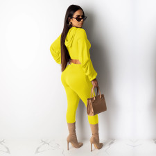 Solid Hoodie Top And Pants Two Piece Sets TE-4111