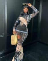 Sexy Dollar Print Mesh Long Sleeve Slim Maxi Dress SHD-9504