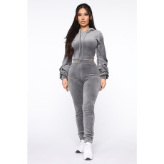 Casual Solid Hoodies Pants Two Piece Sets SHE-7966