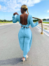 Casual Solid Backless Long Sleeve 2 Piece Pants Set BLX-7549