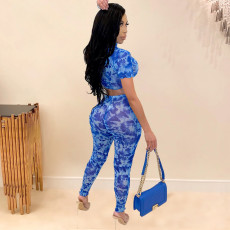 Sexy Printed Short Sleeve Two Piece Pants Set SHE-7172