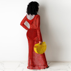 Sexy Mesh Gird Hollow Out Hooded Long Club Dress TE-4230