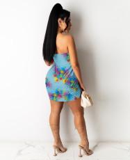 Sexy Printed Off Shoulder Tube Dress MA-Y411