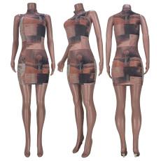 Sexy Printed Mesh Sleeveless Club Dress MDF-5227