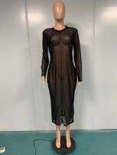 Plus Size Mesh See Though Long Sleeve Club Dress YIM-175