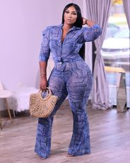Plus Size Casual Printed Long Sleeve 2 Piece Pants Set QHF-8658