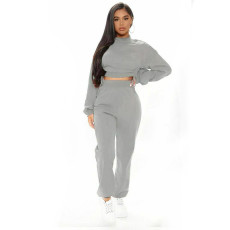 Solid Plush Drawstring Long Sleeve Two Piece Pants Set YMT-6237