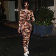 Tiger Stripe Print Thumb Hole 2 Piece Pants Set TE-4339