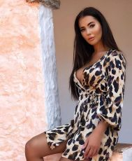 Sexy Leopard V Neck Long Sleeve Mini Dress LSL-6178