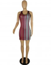 Multi Strioe Bodyon Mini Dress PIN-616