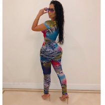 Sexy Colorful Snake Skin Print Two Piece Sets MA-191