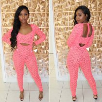 Mesh Perspective Jumpsuit 2 Piece Set LS-0251