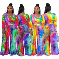 Colorful Printed Long Sleeve Wide Leg Jumpsuits TEN-3369